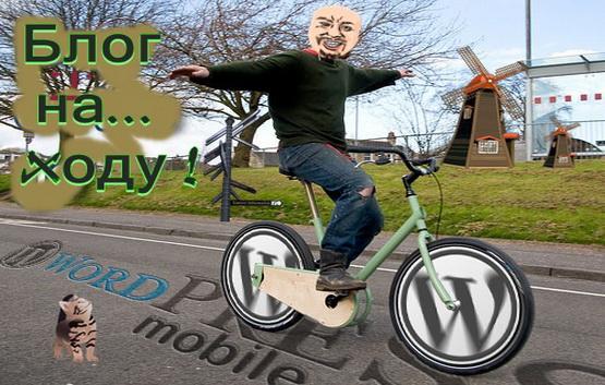 Wordpress и функциональность
