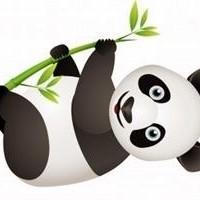 google-panda-update-crop_mini.jpg