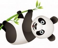 google-panda-update-crop_mini.jpg