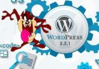 wordpress-5_5_1-33_mini.jpg